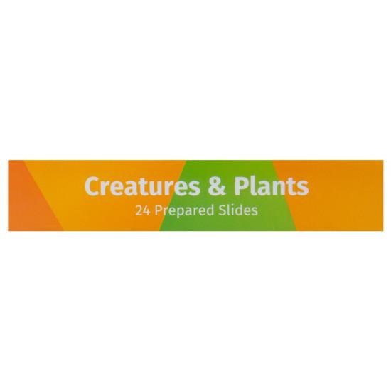 Комплект подготвени проби от живи същества и растения Levenhuk LabZZ CP24